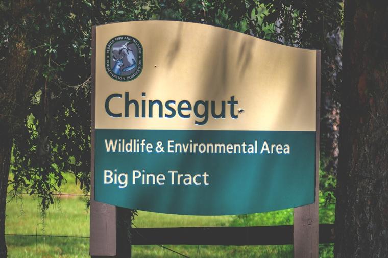 Big Pine Tract