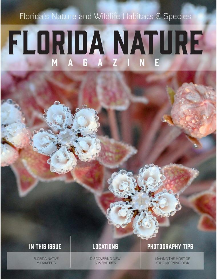 Florida Nature Magazine I-1 Full.jpg