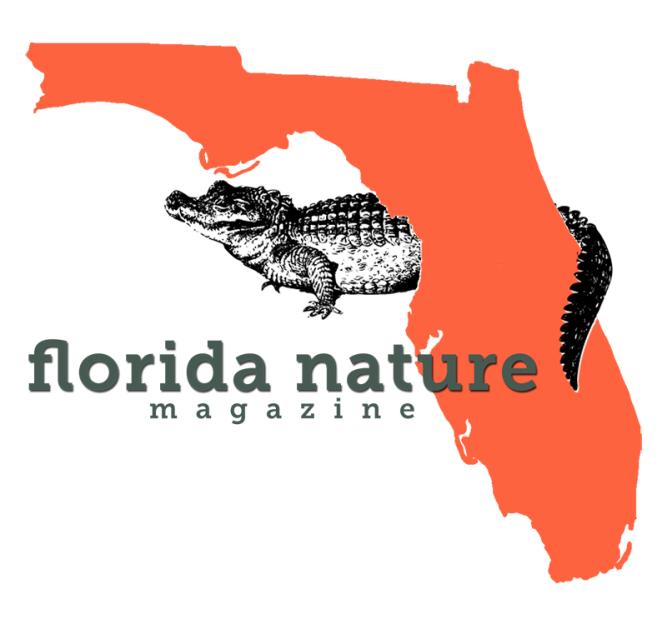 Florida Magazine Flatten