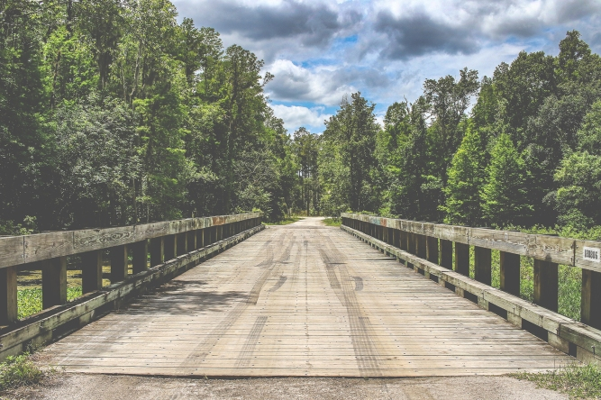 Bridge at Richloam WMA